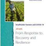 Fom response to recovery and resilience