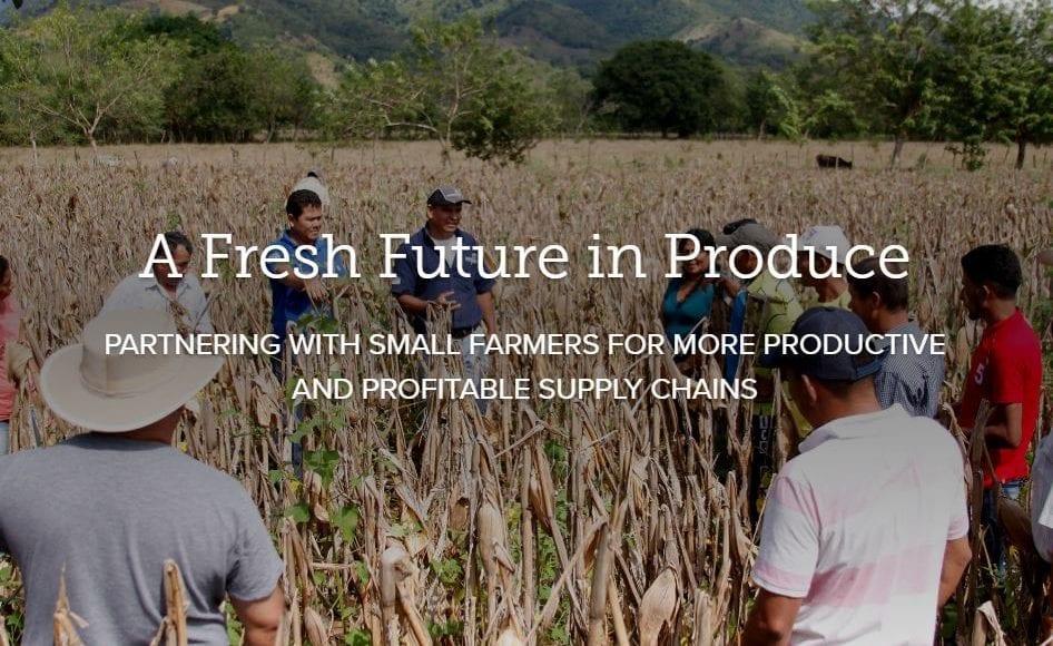 A fresh future in produce