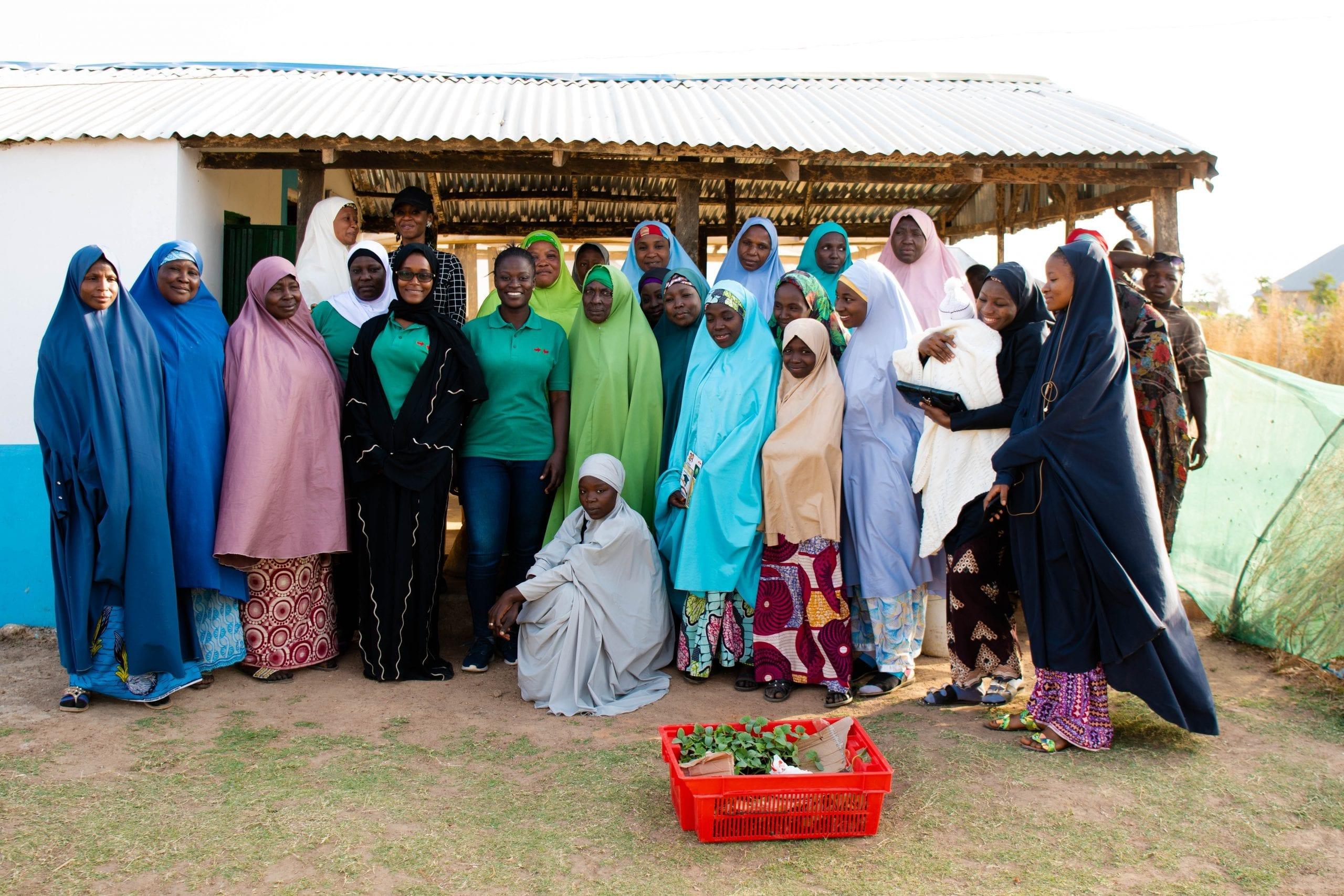 Women cottage tomato processors gather in northwest Nigeria