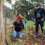Volunteers participate in Citi's Global Community Day