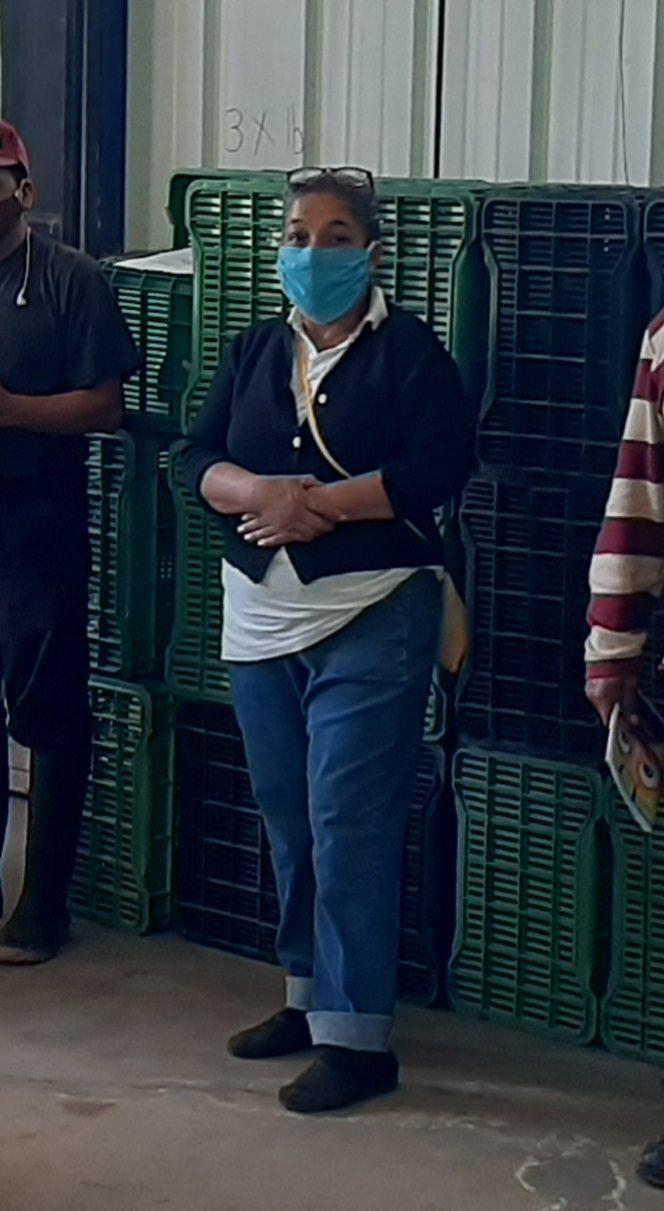 Azucena is an avocado farmer in Guatemala