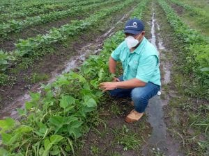 A TechnoServe farmer trainer in Honduras
