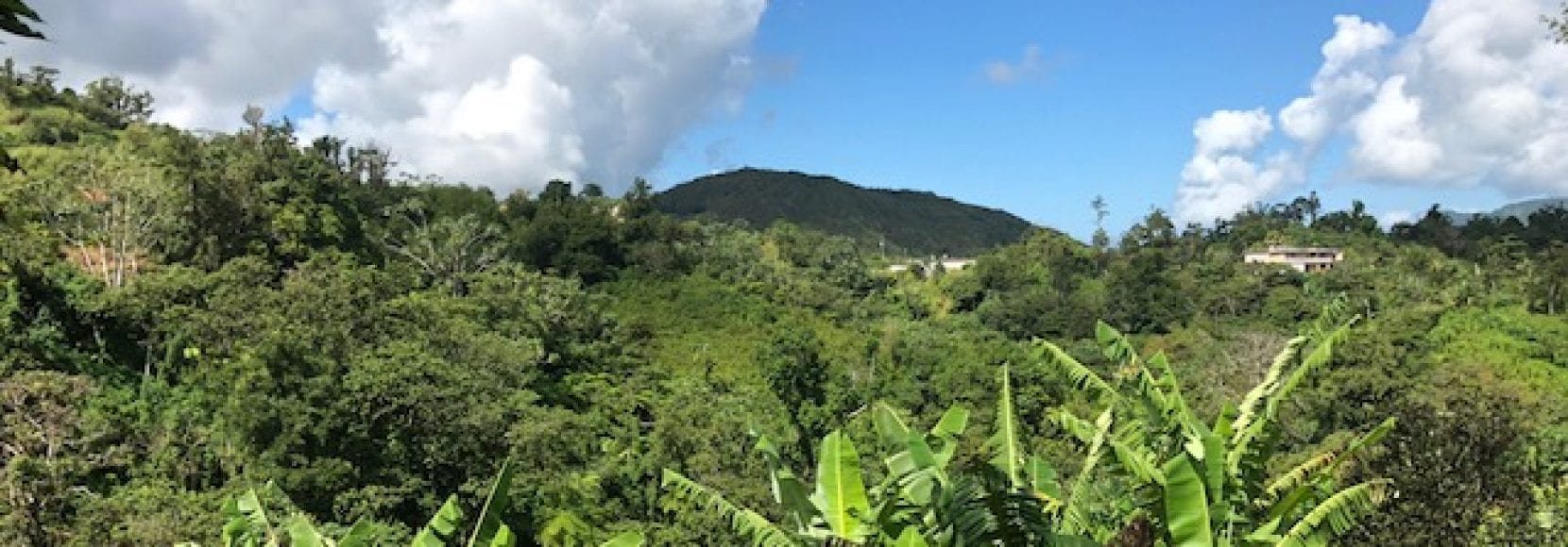 A landscape in Puerto Rico