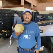 Eloy Castañón holds a melon in a processing facility in Mexico
