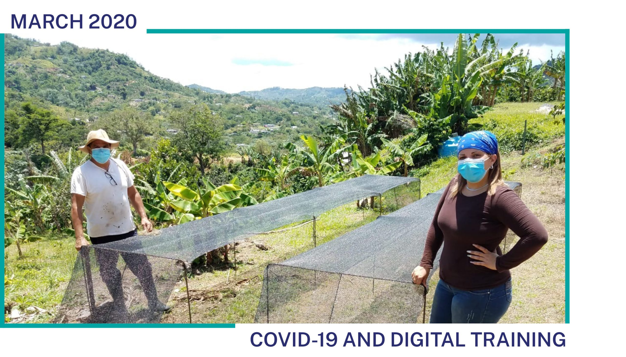 TechnoServe farmer trainer conducts a socially-distant farm visit