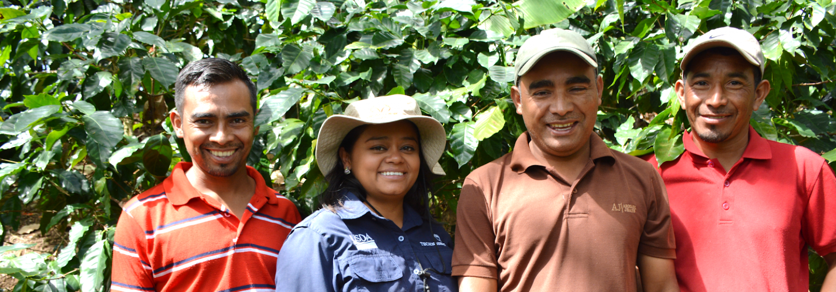 Coffee farmers and a TechnoServe trainer in Honduras