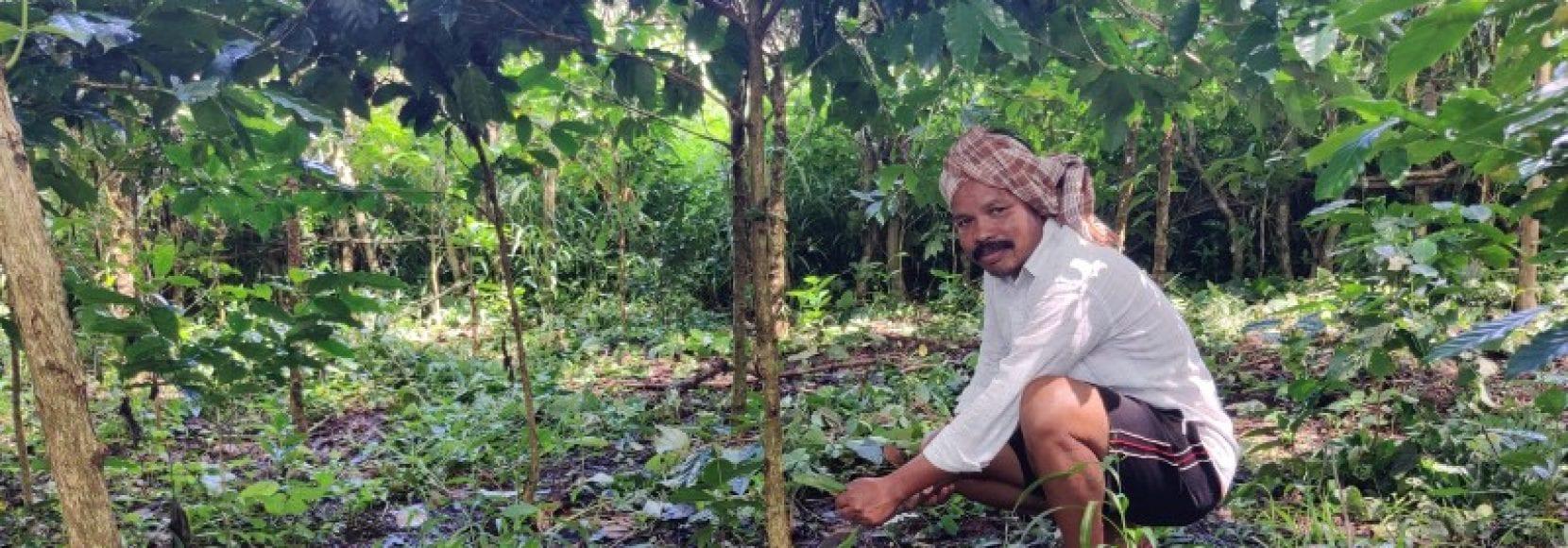 Mottadam Jogiraju tends to his farm in Visakhapatnam district, India