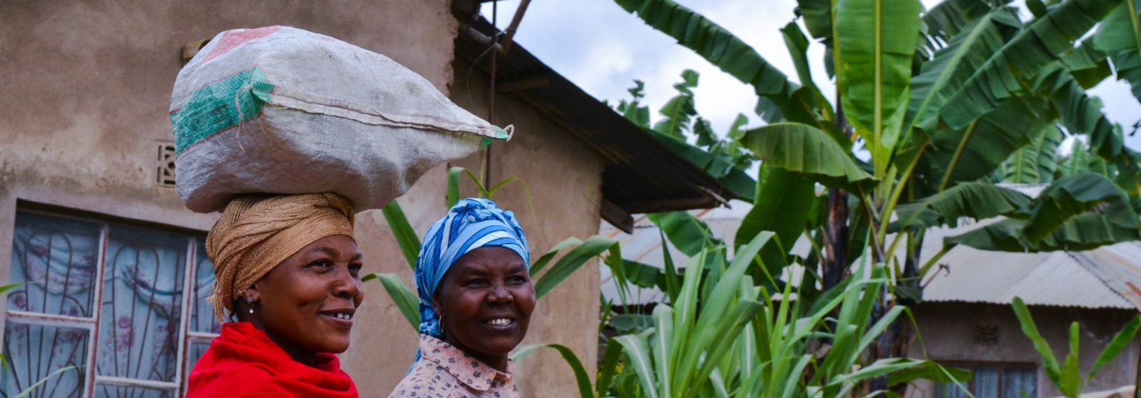 what is food security and how is it impacting people in 2021? Blog header