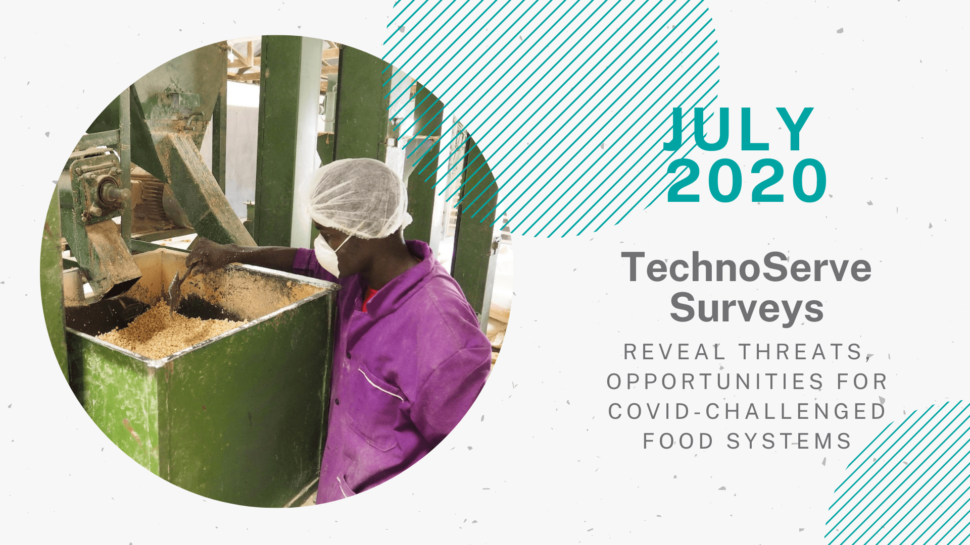 "Image for the ""July"" achievement featured in TechnoServe's Year in Review 2020 blog. A circular picture on the left side, a woman wearing a PPE mask for COVID-19 protection, a hair net, and a purple shirt is working at a cashew processing facility. The right half of the graphic reads ""July 2020: TechnoServe Surveys Reveal Threats, Opportunities for COVID-Challenged Food Systems."""