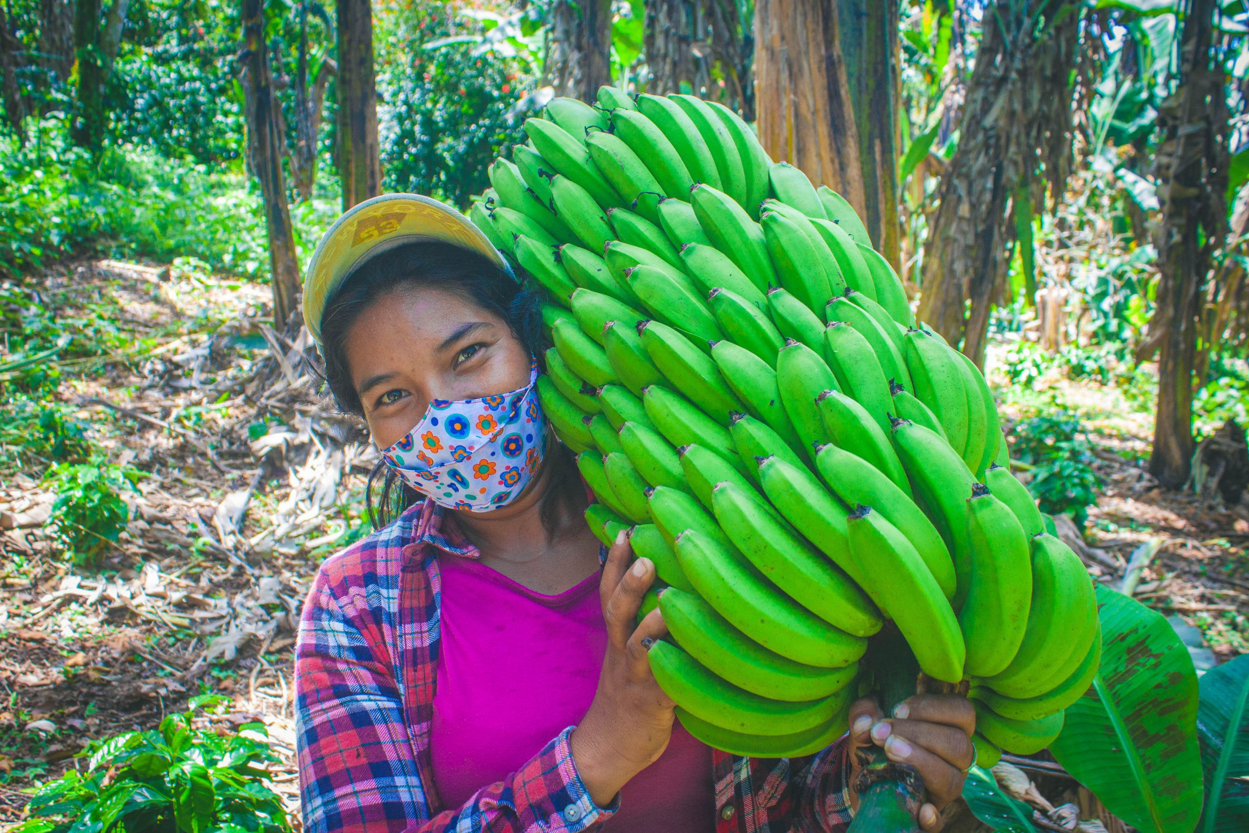 A woman leader in her community, single parent, and the head of her household, Rosa Gonzales carries a bunch of bananas in Matapalo, Nicaragua