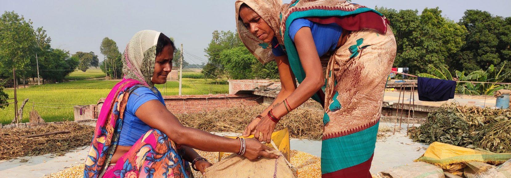 women who lead -Maize procurement in Uttar Pradesh, India