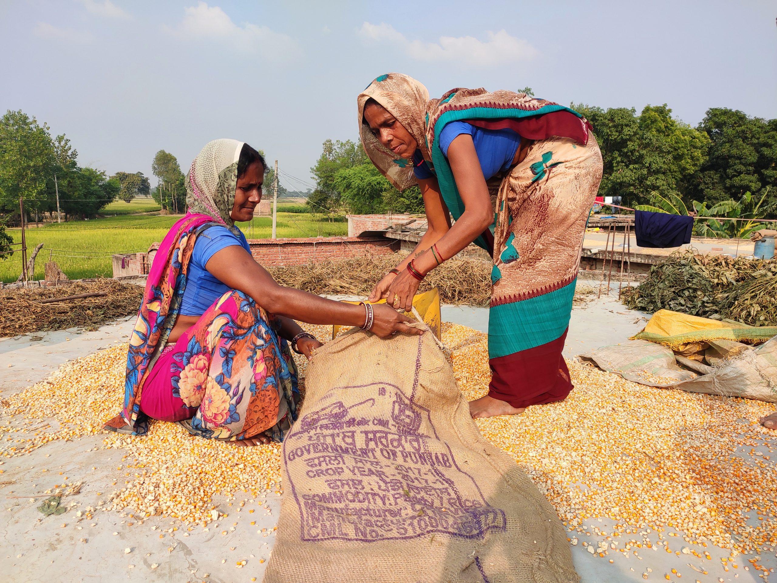 women who lead - Maize procurement in Uttar Pradesh, India