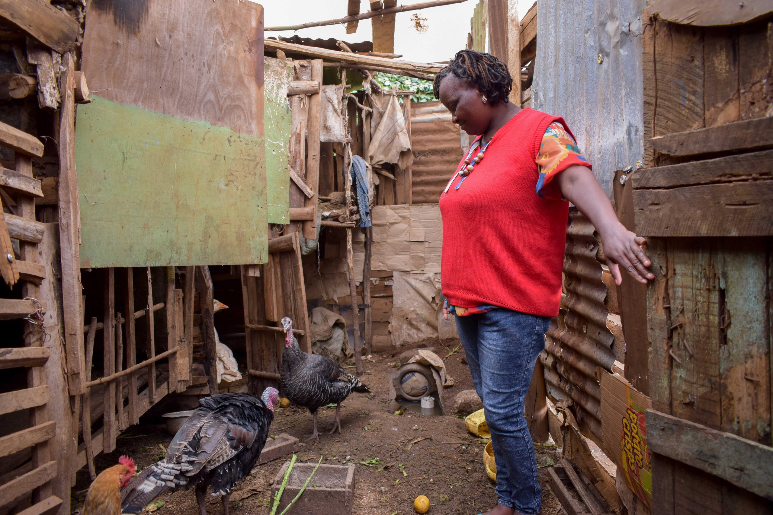 Cecelia Njeru with turkeys she bought with the loan from 4G Capital to increase her revenue stream