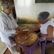 A family-run small business in Brazil produces fresh garlic.