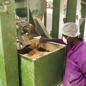 Photo of a food processor helping fight food insecurity in the developing world.