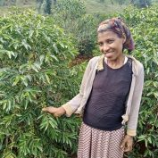promoting gender equality in the coffee industry means empowering women farmers and small agribusiness owners