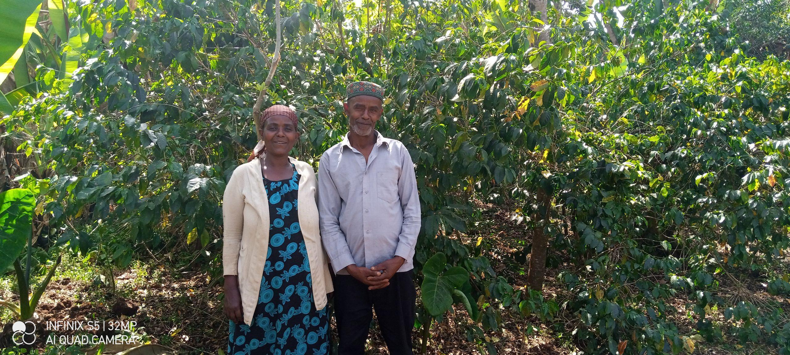Fedila Hussein and Mustafa Tesfaye, two coffee farmers in Ethiopia, stand in front of their coffee trees.