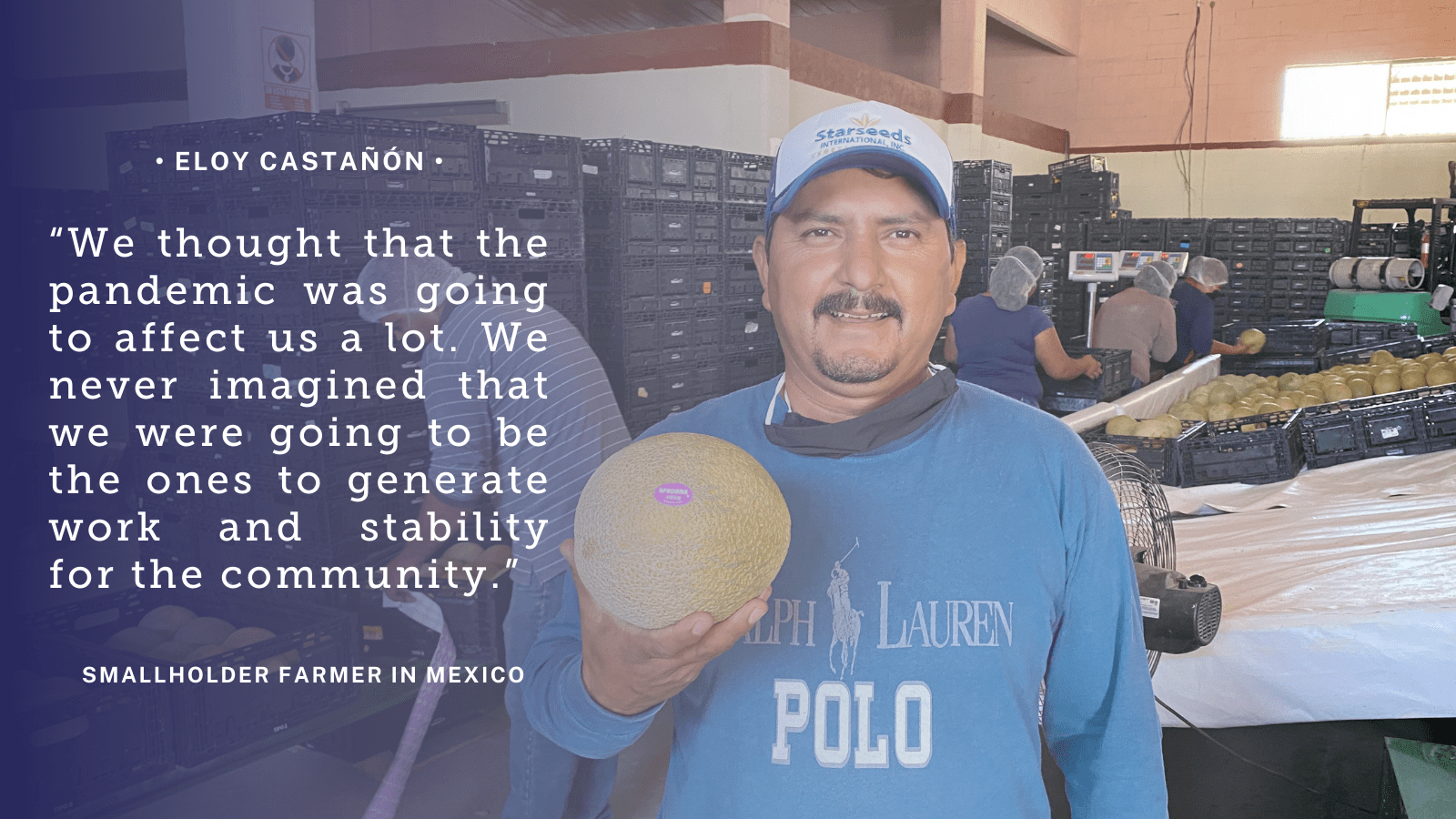 "Purple quote graphic reads: ""We thought that the pandemic was going to affect us a lot. We never imagined that we were going to be the ones to generate work and stability for the community."" -Eloy Castañón, smallholder farmer, Mexico"