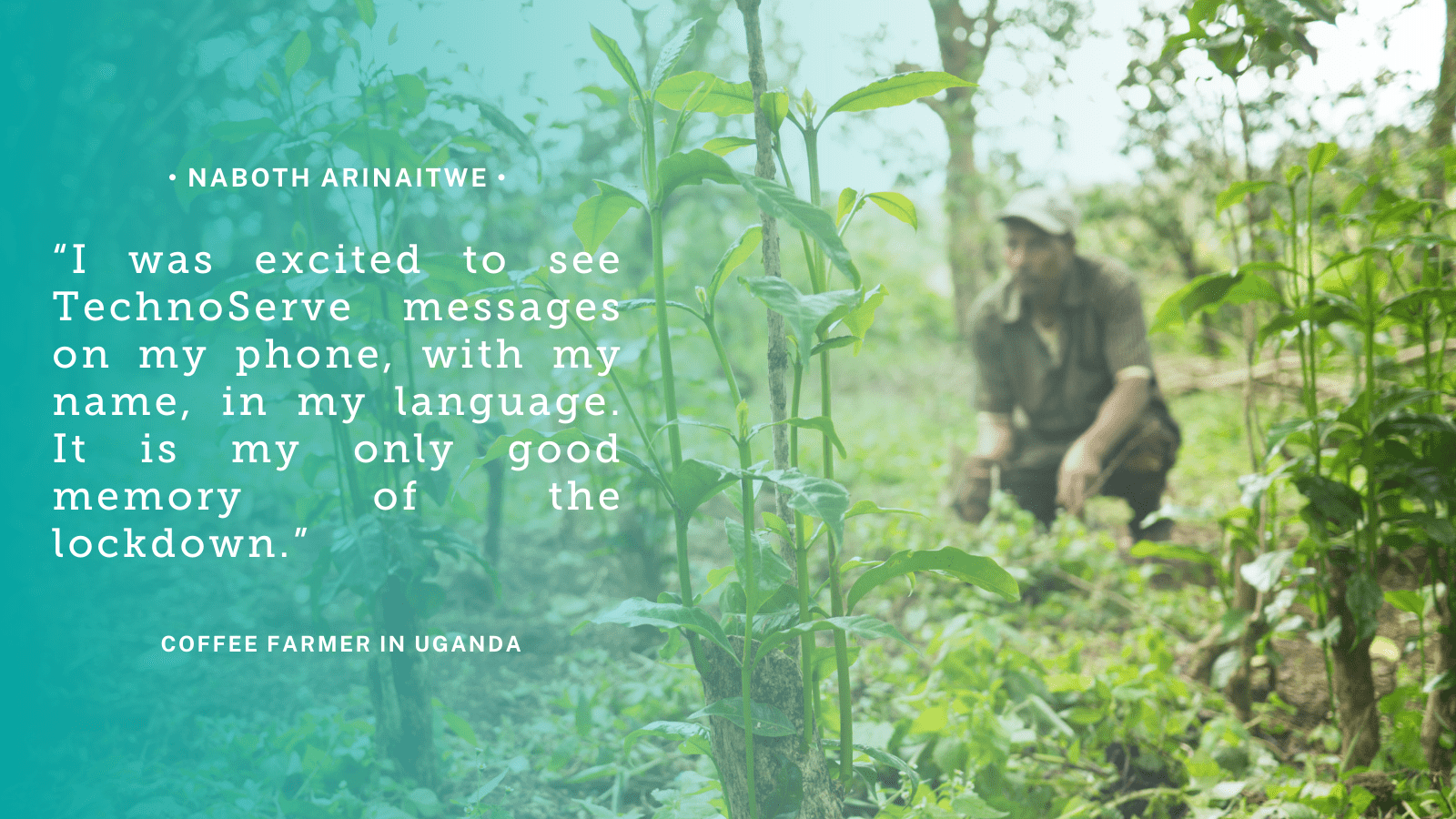"Teal quote graphic reads: ""I was excited to see TechnoServe messages on my phone, with my name, in my language. It is my only good memory of the lockdown."" -Naboth Arinaitwe, coffee farmer, Uganda"