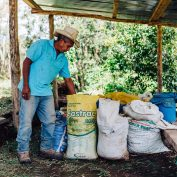 A coffee farmer organizes his fertilizer supply. In Honduras, COVID-19 has significantly impacted commercial agriculture.