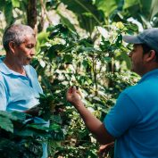Global coffee prices are on the rise after several years of low prices. How can coffee farmers like Rito Giron (pictured) benefit?