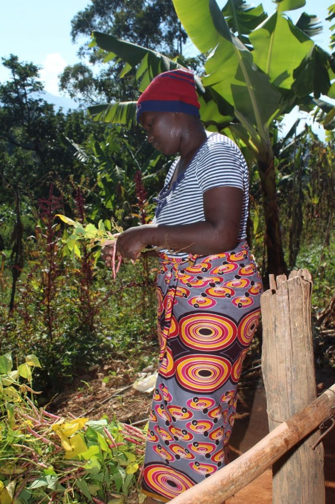 Reviving origins in Zimbabwe, a program in partnership with Nespresso, helps coffee farmers grow their incomes