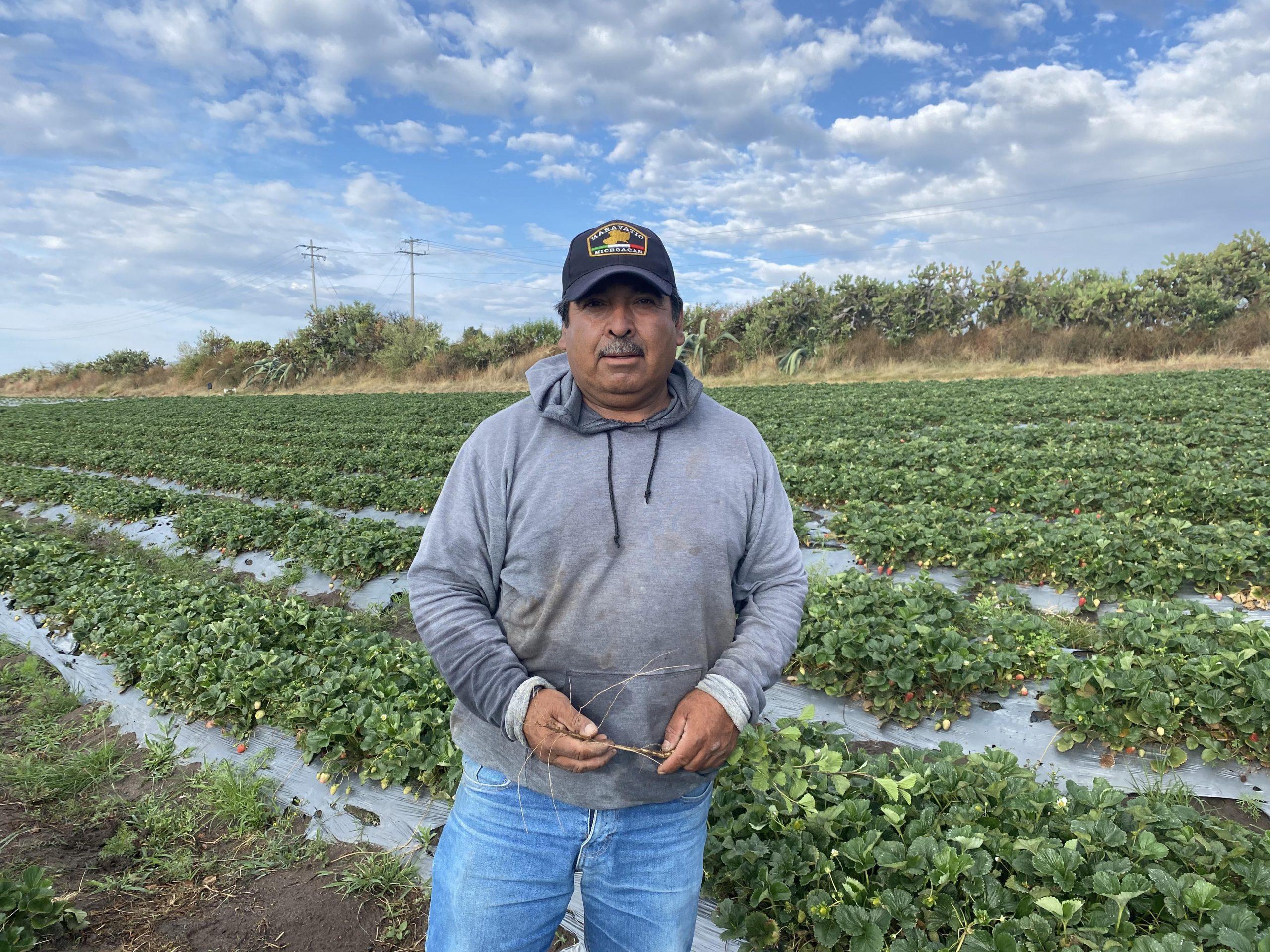 Better farming techniques improve income for José