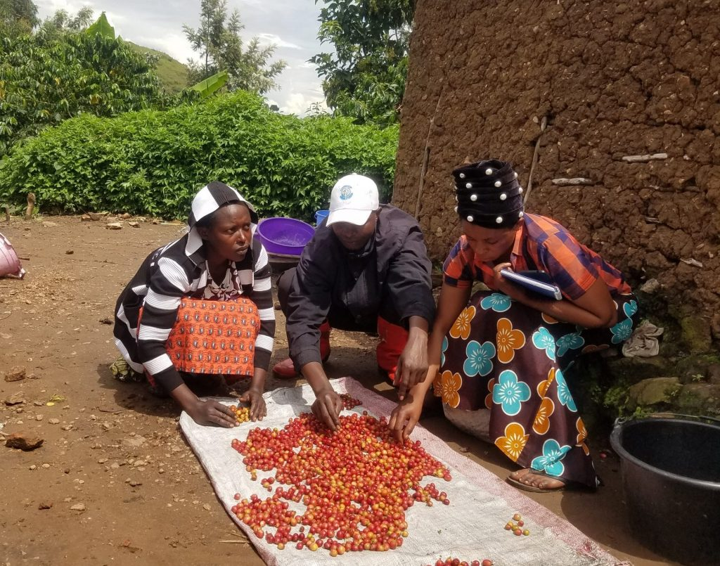 A smallholder coffee farmer and her family, from the Democratic Republic of the Congo