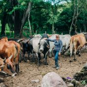 Gladys Gonzales stands with her cows in central Nicaragua. Retaining forests helps reduce the environmental impact of cattle ranching.