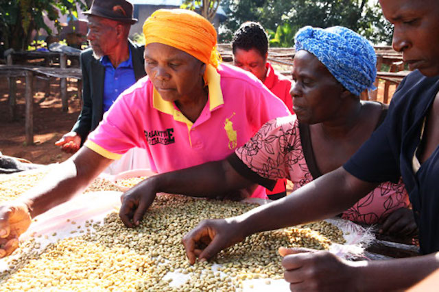 Anna Ushamba, one of the farmers in Nespresso's Reviving Origins program