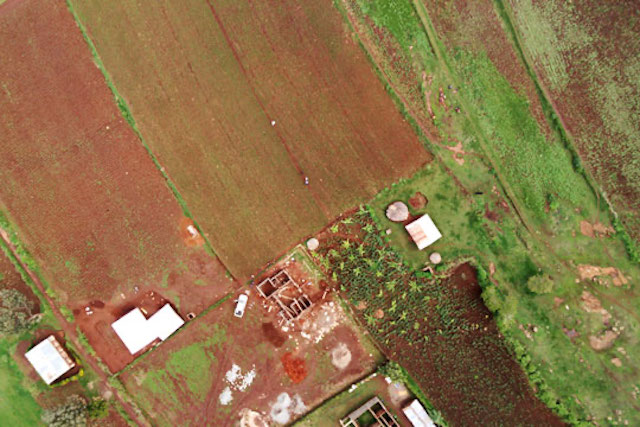 Drone image of a farm in Uganda