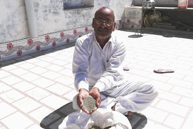Bhawarlal Sharma is a guar farmer in Rajasthan state, India