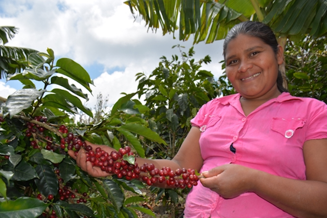A woman coffee farmer in Honduras