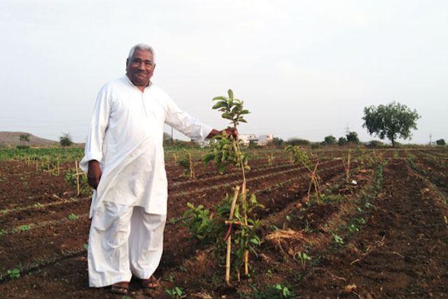 Maganlal standing in his field in Madhya Pradesh, India