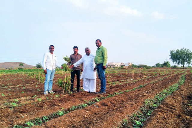 Maganlal stands in a field with his three neighbors