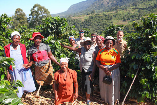 A group of smallholder coffee farmers in Zimbabwe