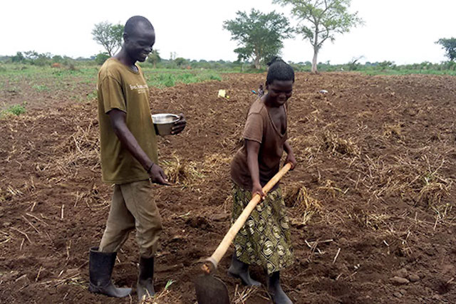 Husband and wife farm together in northern Uganda