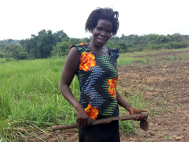 Evaline tills soil in northern Uganda