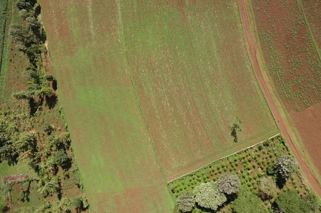 Drones & Satellites Can Transform African Agriculture   TechnoServe