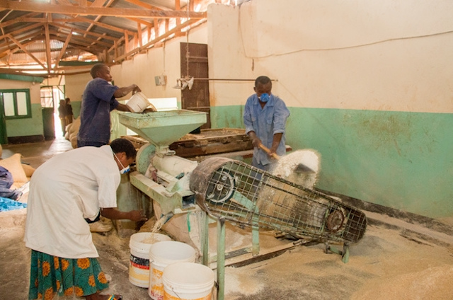 Employees work in a food processing plant