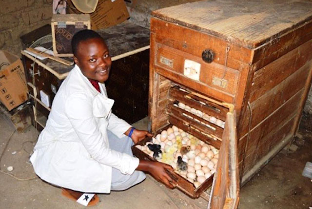 STRYDE alumna Ndinagwe's poultry business