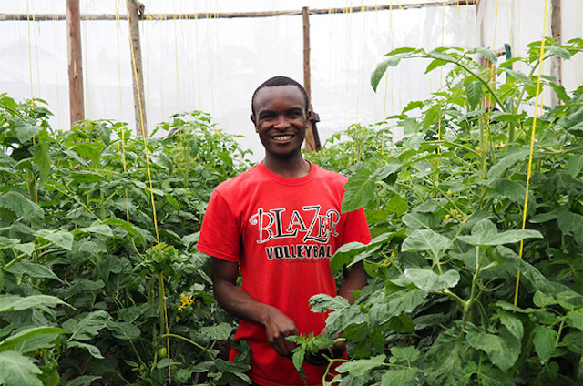Greenhouses Offer People The Chance For Prosperity Technoserve