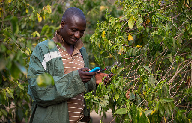 Digital Is Solving Three Problems in Agriculture