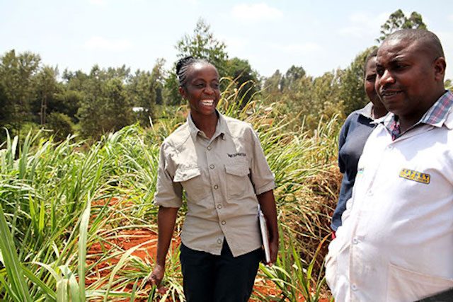 An agronomist in Ethiopia