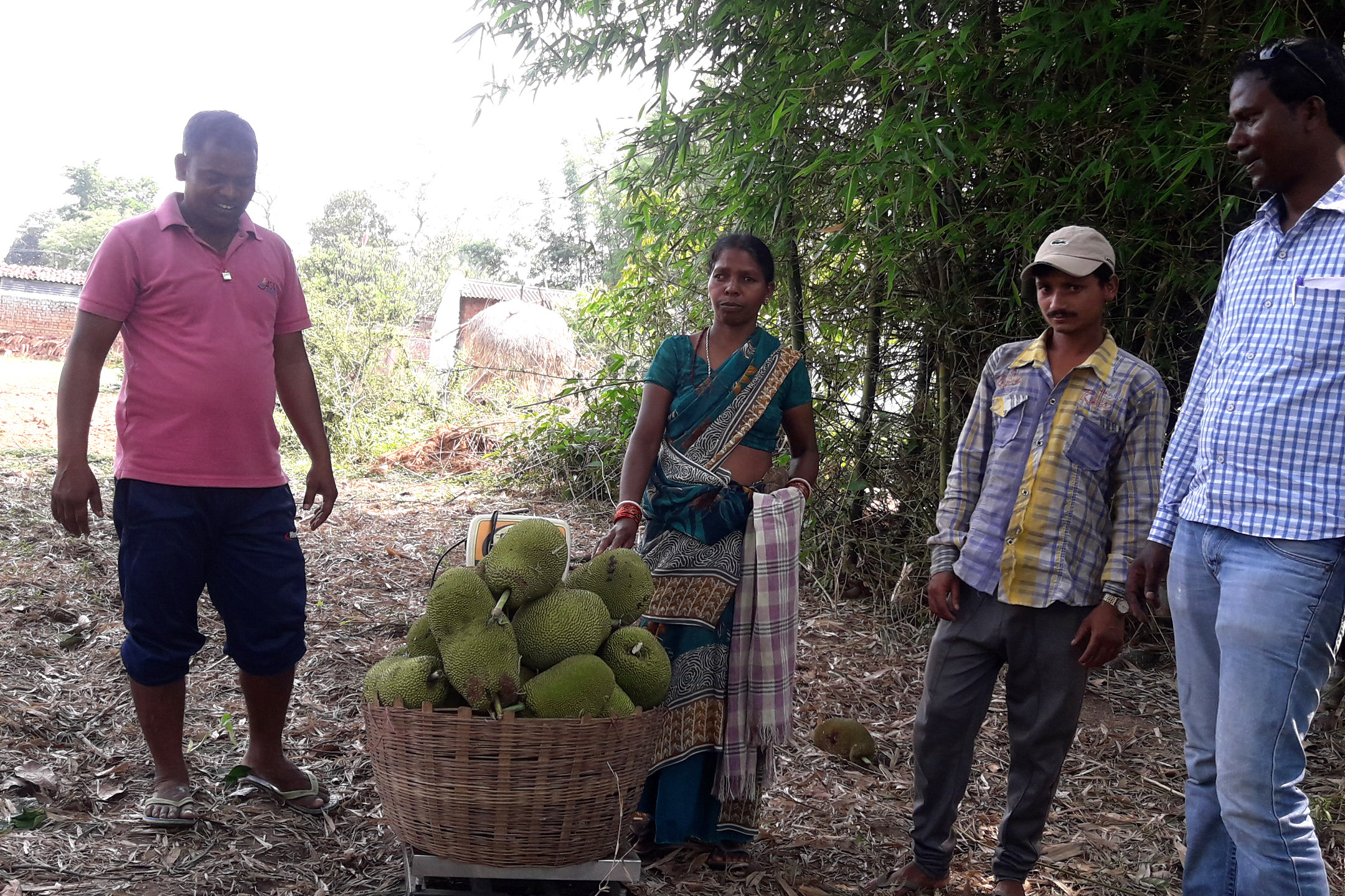 Market Linkages & Value Chain Interventions Bring Hope to India