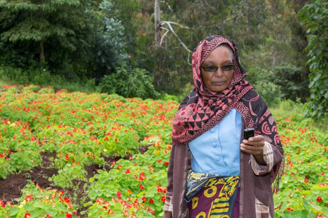 Entrepreneurial floriculture in Tanzania