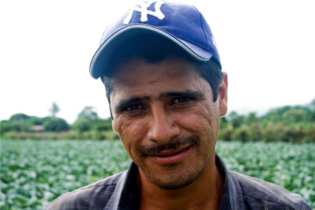 Cabbage farmer in a small village in Nicaragua