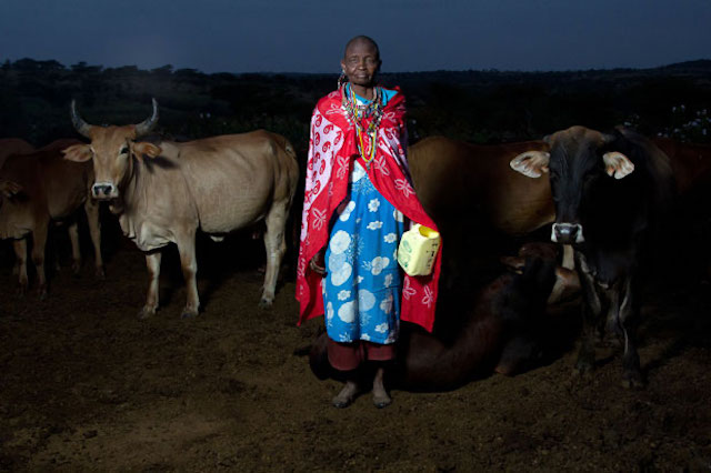 Maasai women photographed while on her daily dairy duties