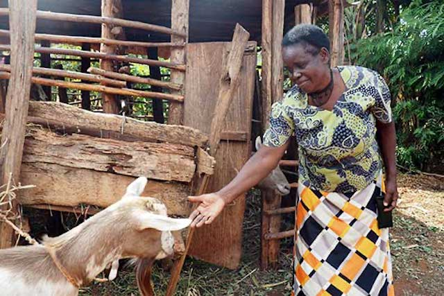 Magdalene Gachungiri with a goat