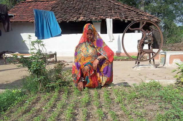 Tended By Women Kitchen Gardens Bloom In India Technoserve